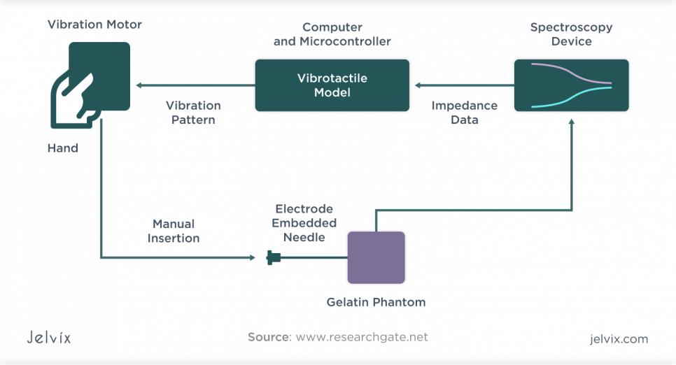 Vibrotactile model